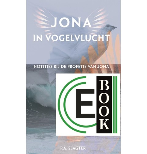 Jona in vogelvlucht (e-book)